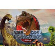 Ingresso Meia Entrada - Vale dos Dinossauros