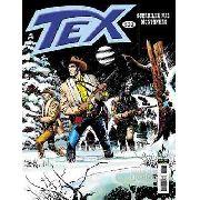 Revista Hq Gibi - Tex Mensal 532 - Guerrilha Nas Montanhas