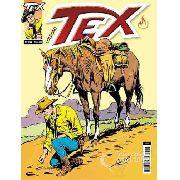Hq Gibi - Tex Coleção 333 - A volta do carniceiro