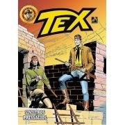 Hq Tex Em Cores 42 - Sinistros Presságios