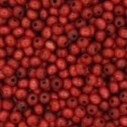 Contas de Madeira nº4 - Vermelha