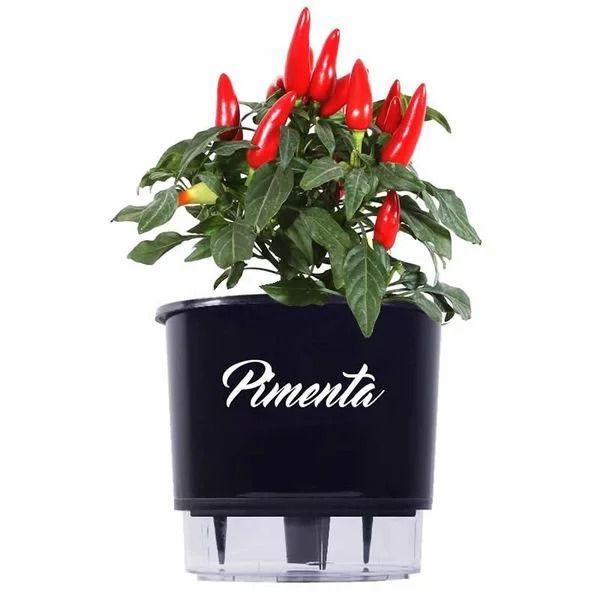 Kit Vaso Autoirrigável Pimenta (Acompanha Sementes)