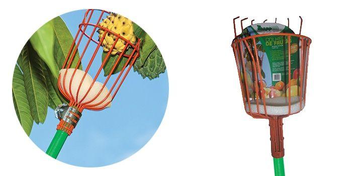 Linha Poda e Corte - Colhedor de Frutas sem cabo