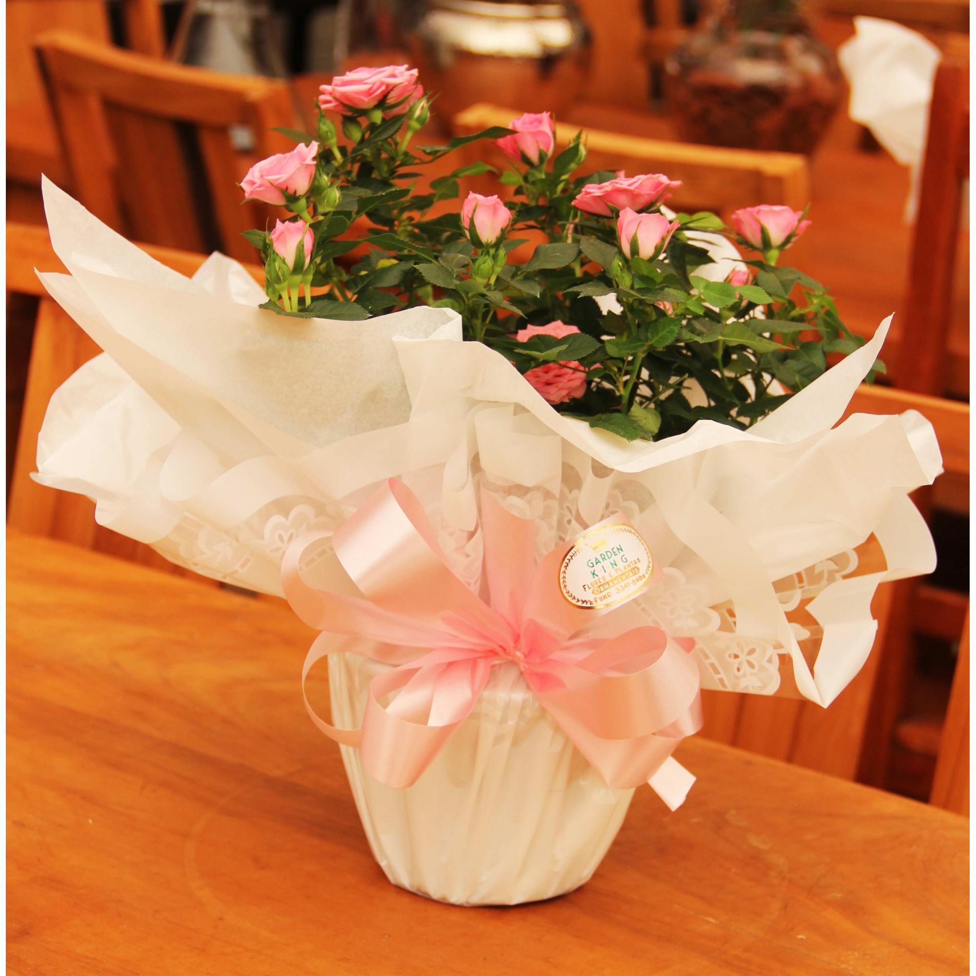 Mini Rosa Embalada - Dia das Mães