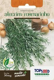 Semente Alecrim Rosamarinho 30mg