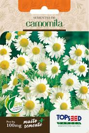 Semente de Camomila 100mg