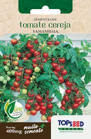 Semente de Tomate Cereja 400mg