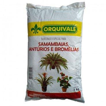 Substrato Especial Samambaias, Antúrios e Bromélias 1kg - Orquivale