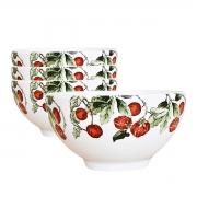 Jogo 4 Bowls 480ml para Cereal Jungle Scalla