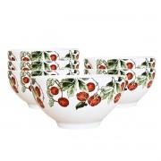 Jogo 6 Bowls 480ml para Cereal Jungle Scalla