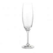 Jogo 6 Taça para Degustação Champagne de Cristal Ecológico 220 ml