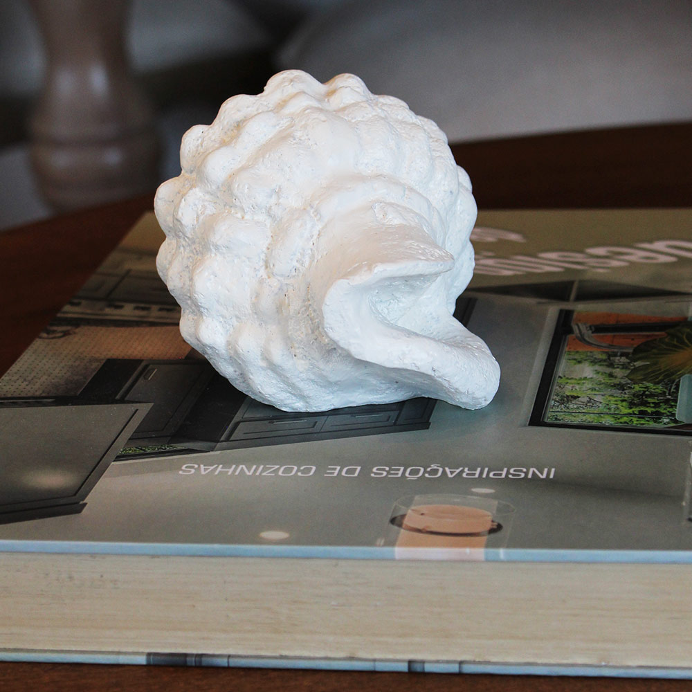 Concha Cônica Decorativa Branca  - Lemis