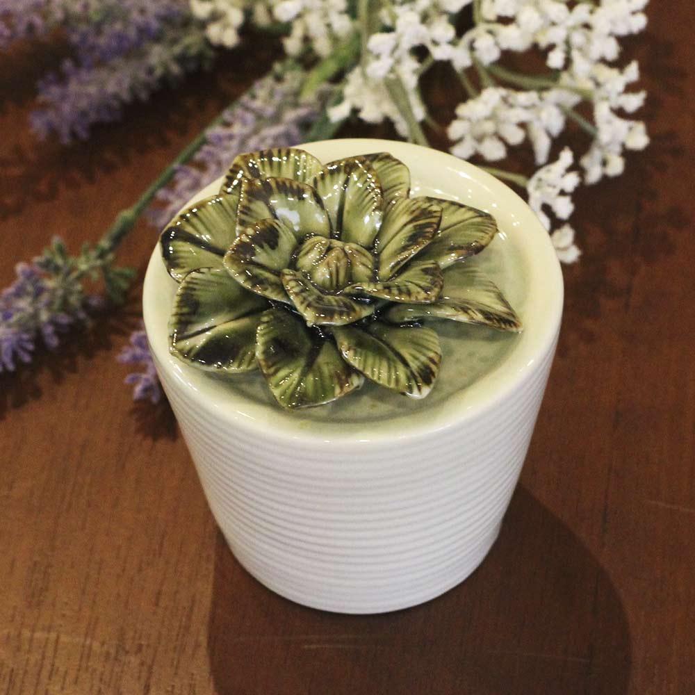 Vaso com Suculenta de Cerâmica  - Lemis
