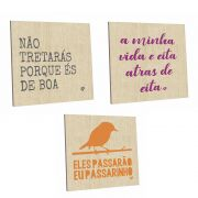 Kit com 3 Quadros Decorativos Crush 20x20 cm