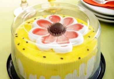 Embalagem para bolo Torta Pequena  Alta 1,7Kg - G 50CTA
