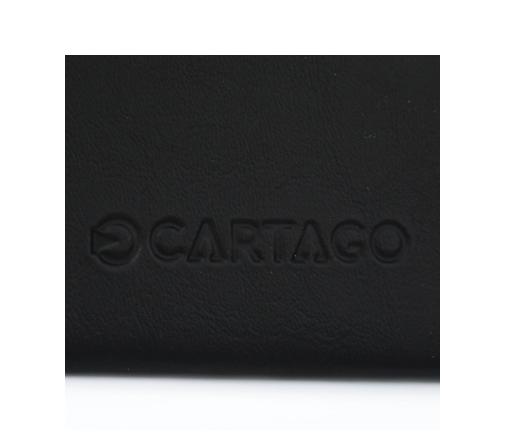 CHINELO CARTAGO 11436 C/CARTEIRA
