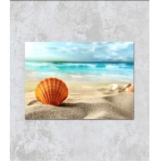 Decorativo - Conchas na areia