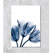 Decorativo - Raio-X Flor Azul