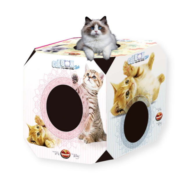 Brinquedo Caixa Cat Box Papelão Arranhar Filhote Furacão Pet