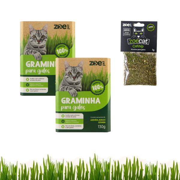 Kit 2 Graminhas Para Gato P/ Digestão e Pelos E 1 Catnip 1g