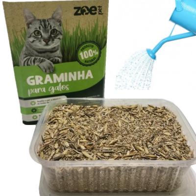 Kit 3 Graminhas Gatos Zoe Pet Eliminação De Pelos e Digestão