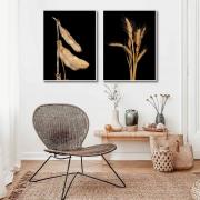 Quadros Decorativos Agro Soja e Trigo