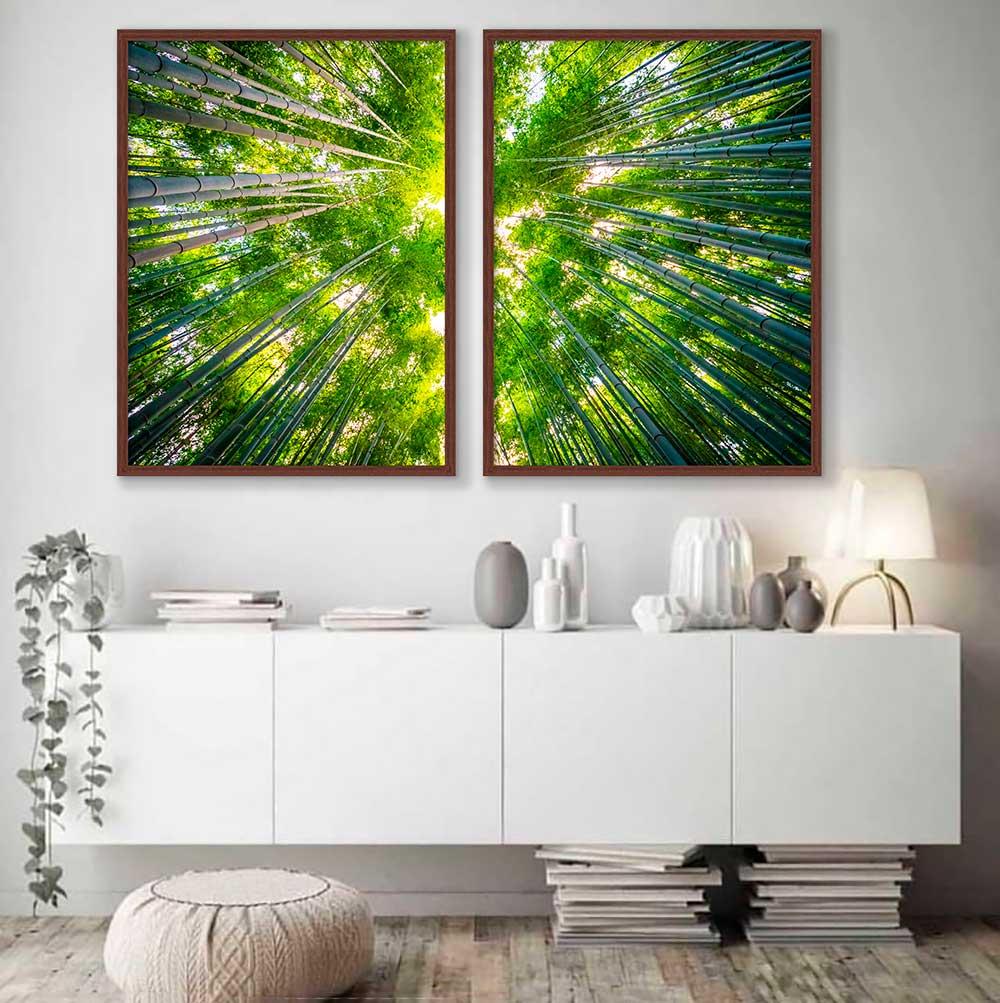 Conjunto de Quadros Decorativos Fotografia Copa de Árvore - Bambus