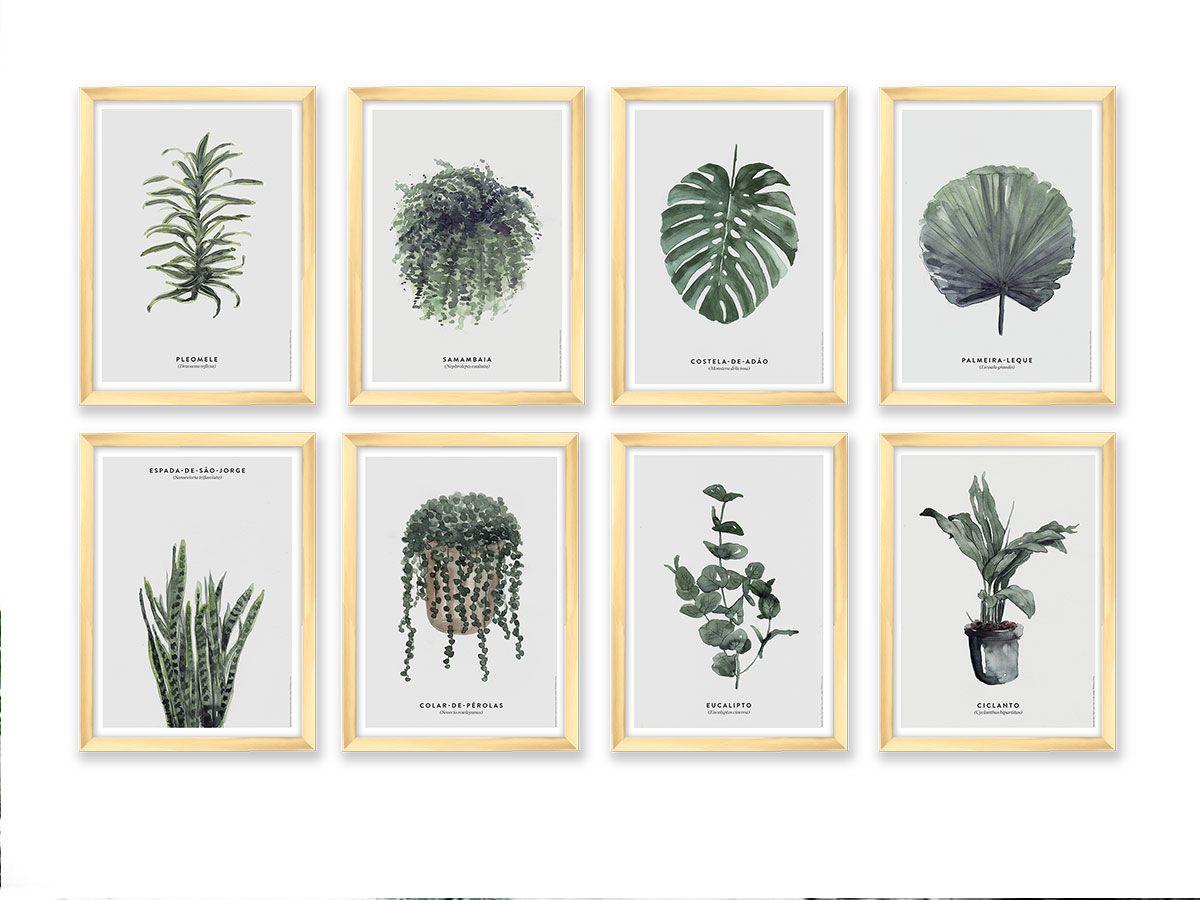 Kit de Quadros Decorativos Folhas e Folhagens