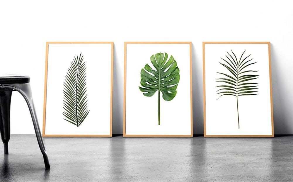 Kit de Quadros Decorativos Folhas Verdes