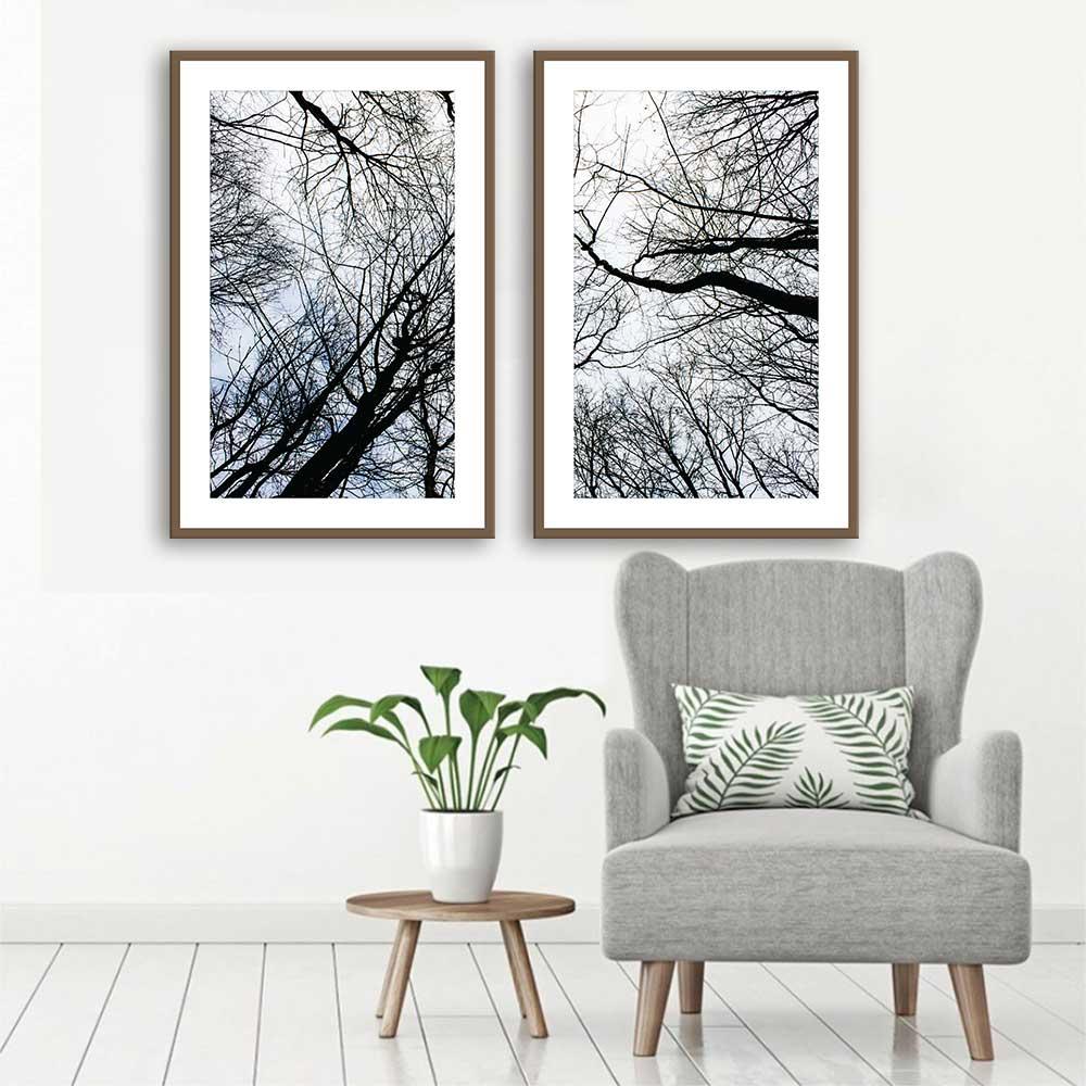 Kit de Quadros Decorativos Galhos de Árvores