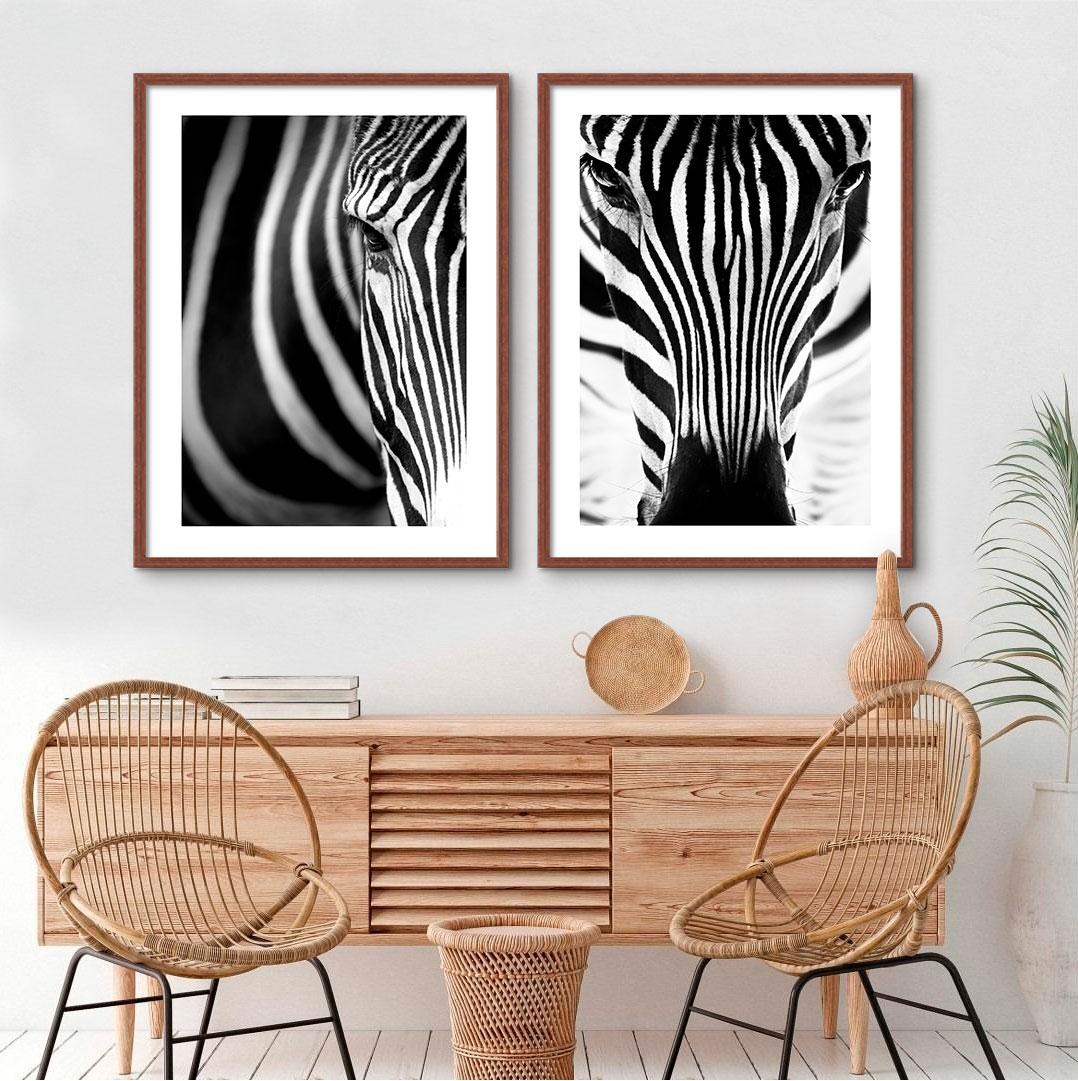 Kit De Quadros Decorativos Zebras