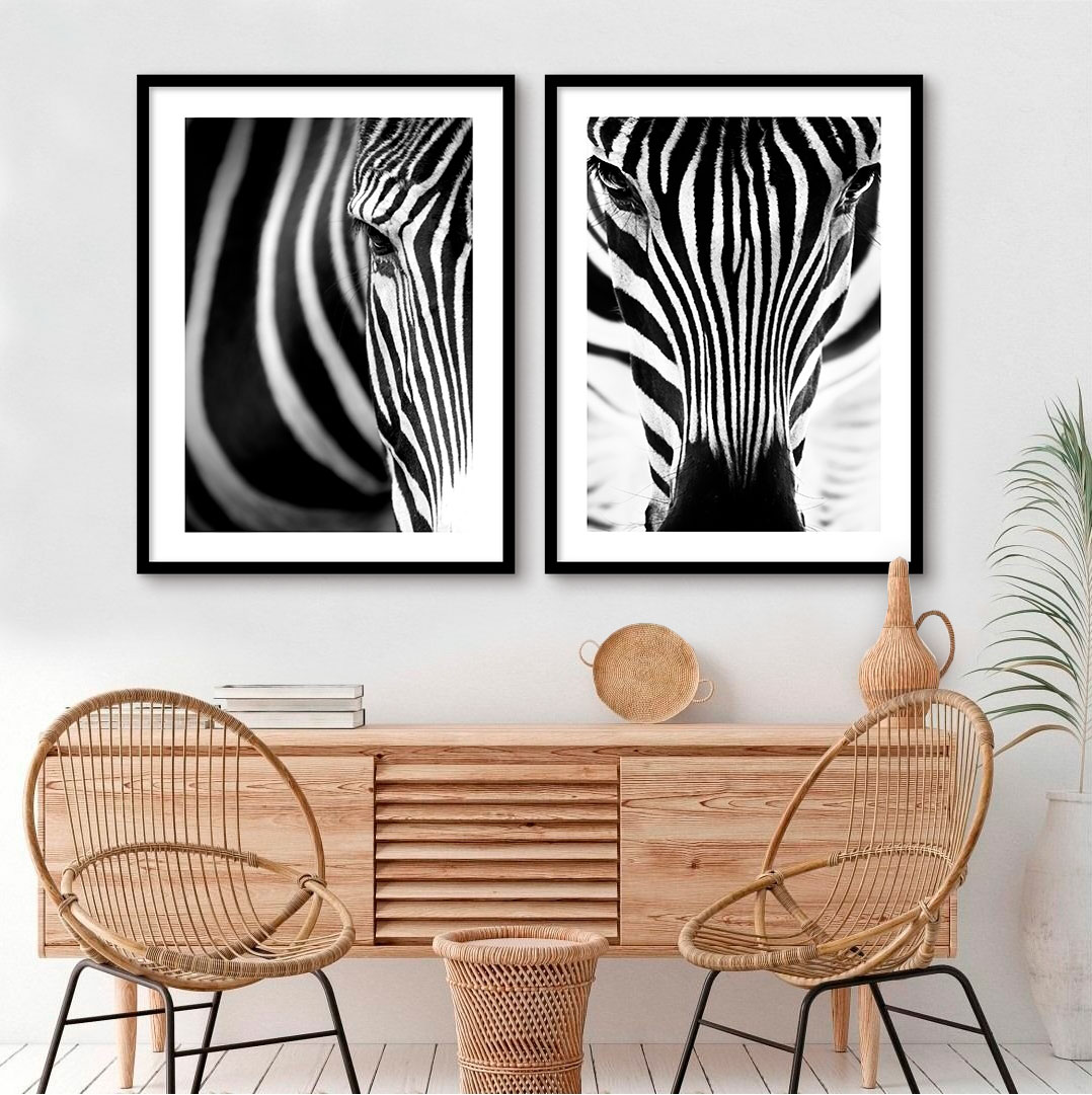 Kit De Quadros Decorativos Zebras
