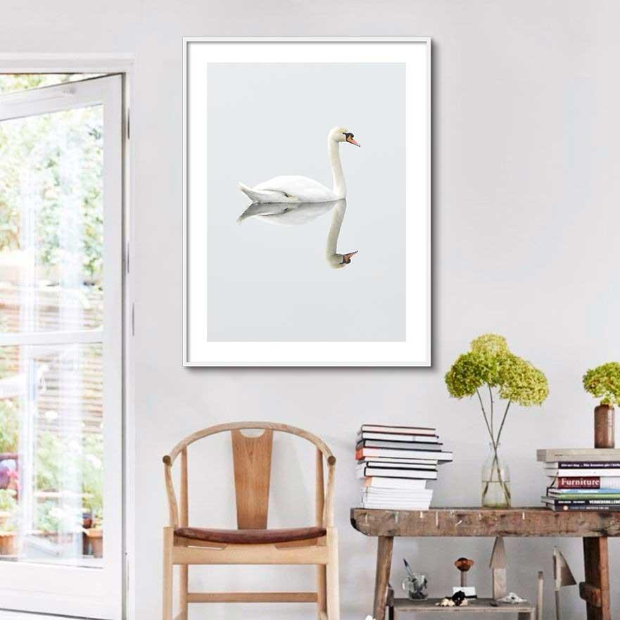 Quadro Decorativo de Animais -  Cisne no Lago com Reflexo na Água