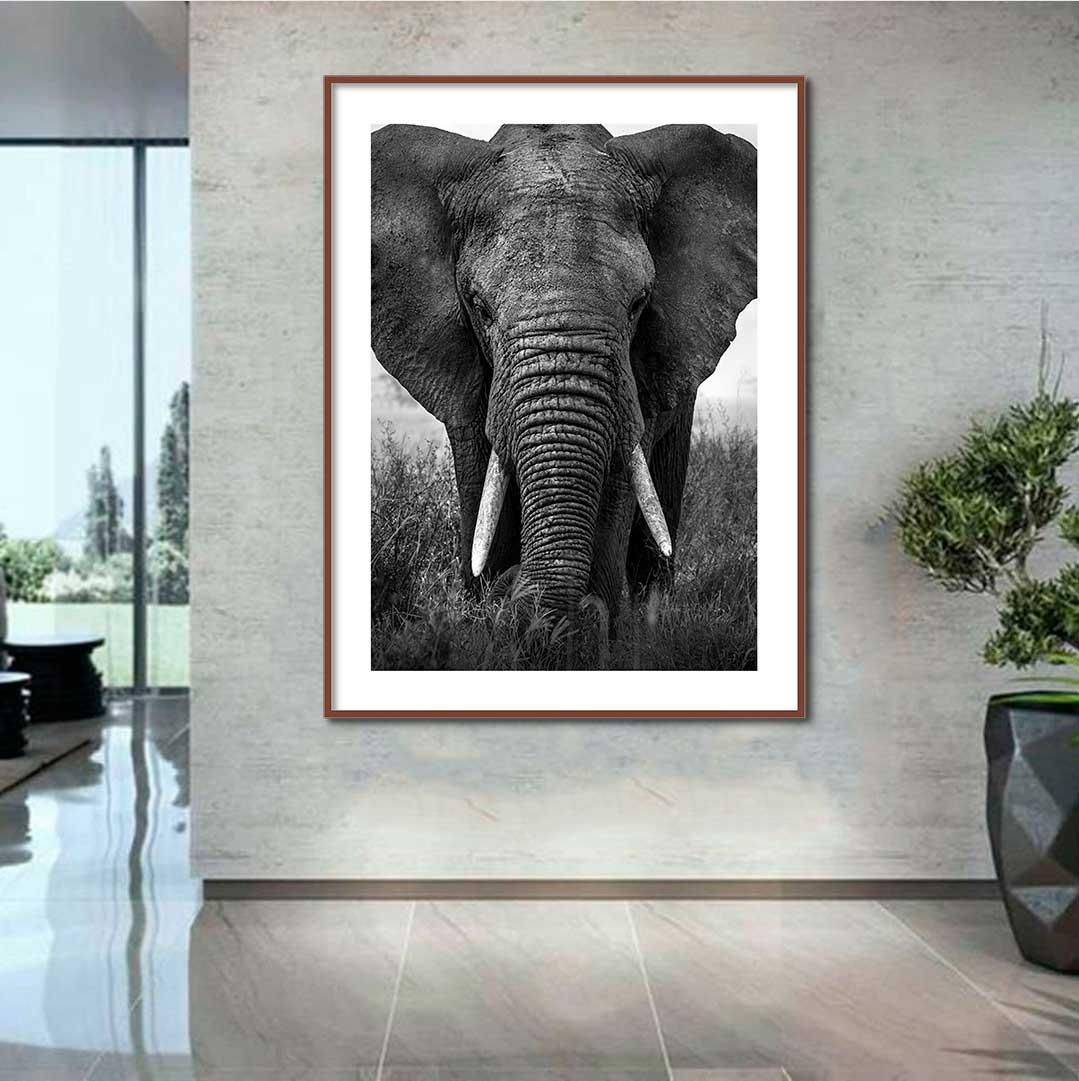 Quadro Decorativo de Animais -  Elefante Na Savana Preto e Branco