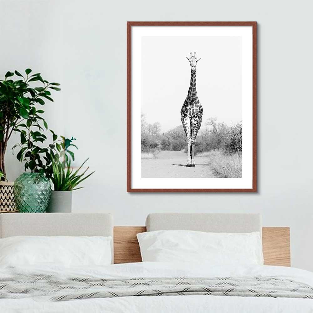 Quadro Decorativo de Animais -  Fotografia Girafa Preto e Branco