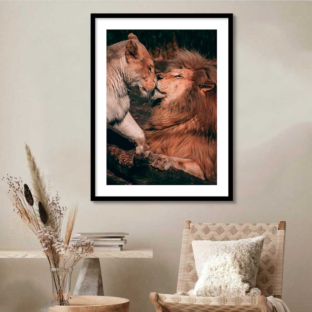 Quadro Decorativo de Animais -  Fotografia Leão e Leoa