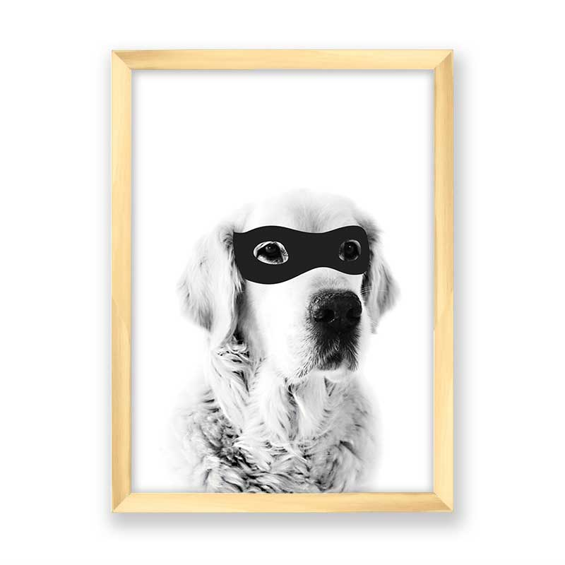Quadro decorativo Dog Mascara do Robin