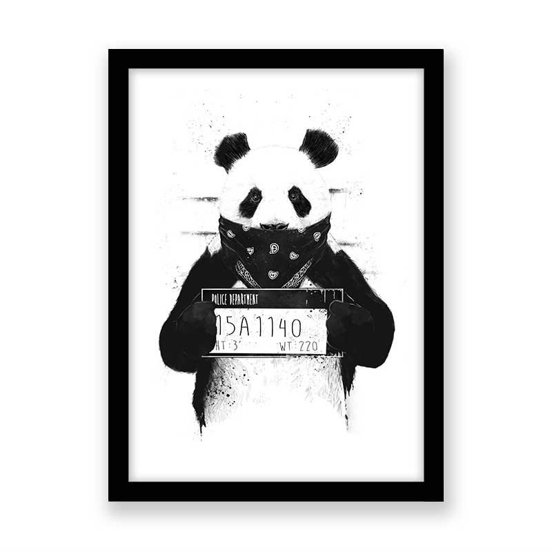Quadro decorativo Panda Procurado
