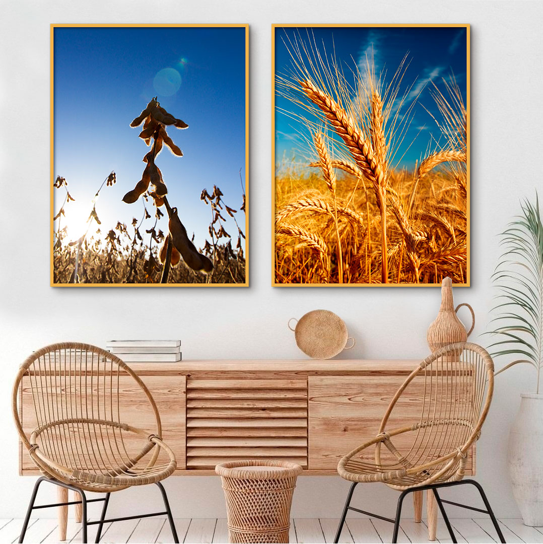 Quadros Decorativos Agro Plantio Céu Azul