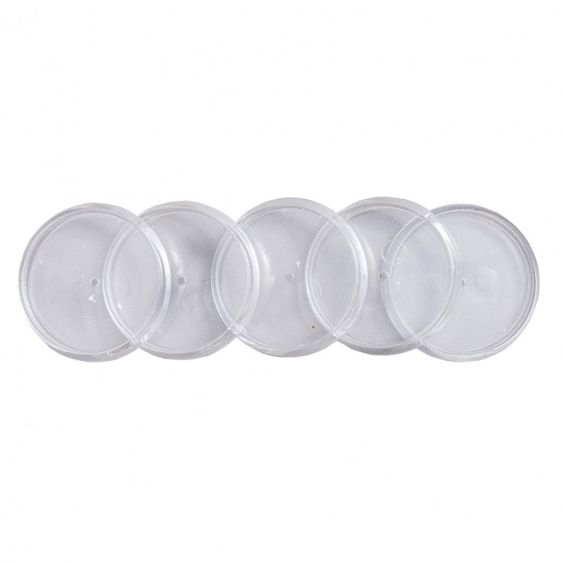 Discos + Elastico Caderno Inteligente - M 31mm  - Papel Pautado