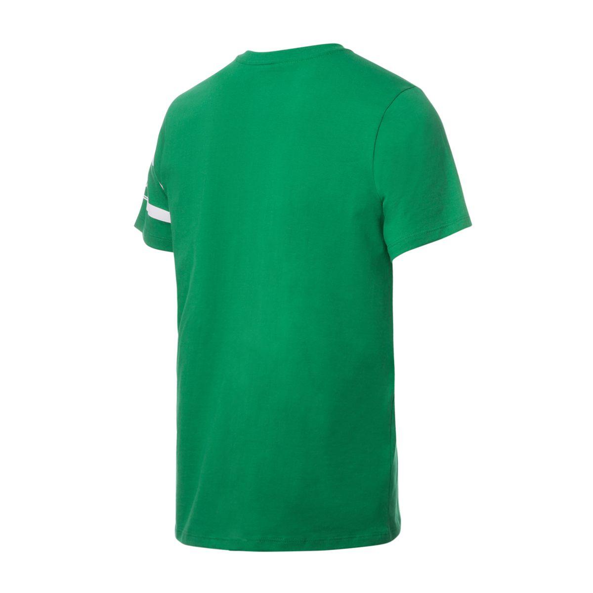 Camisa Capitão Retrô Gol Torcedor Chapecoense Verde