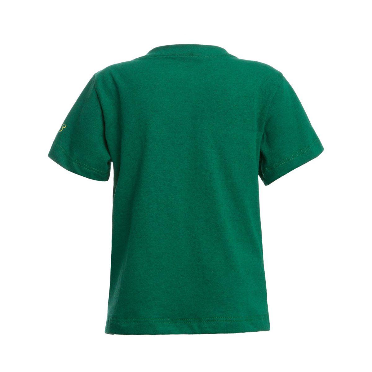 Camisa Infantil Retrô Gol Chapecoense Torcedor 1973 Verde