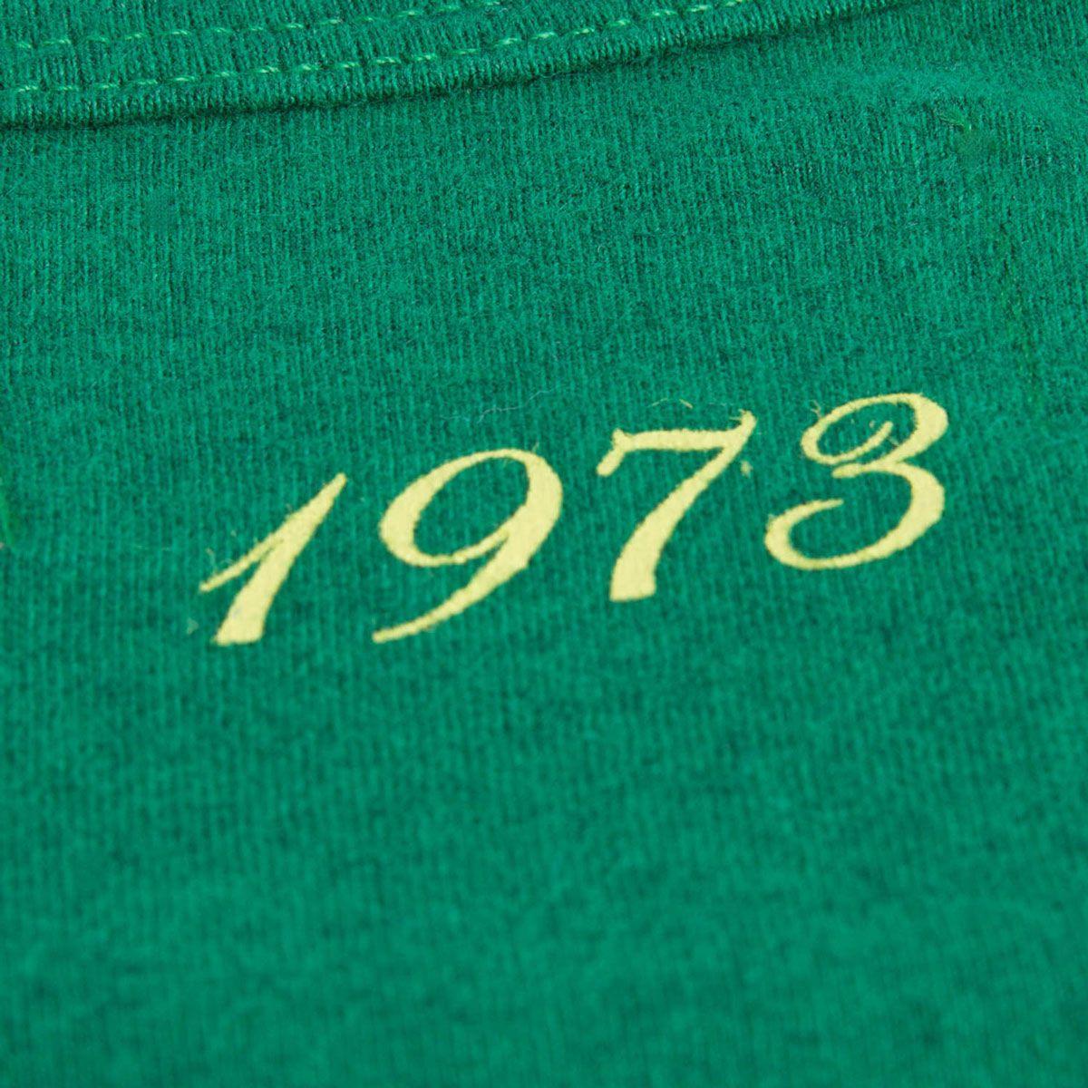 Regata Mescla Retrô Gol Torcedor Chapecoense 1973 Verde