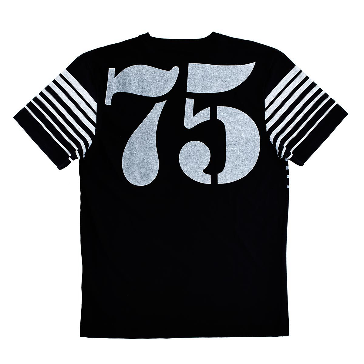 Camiseta AES 1975 Style