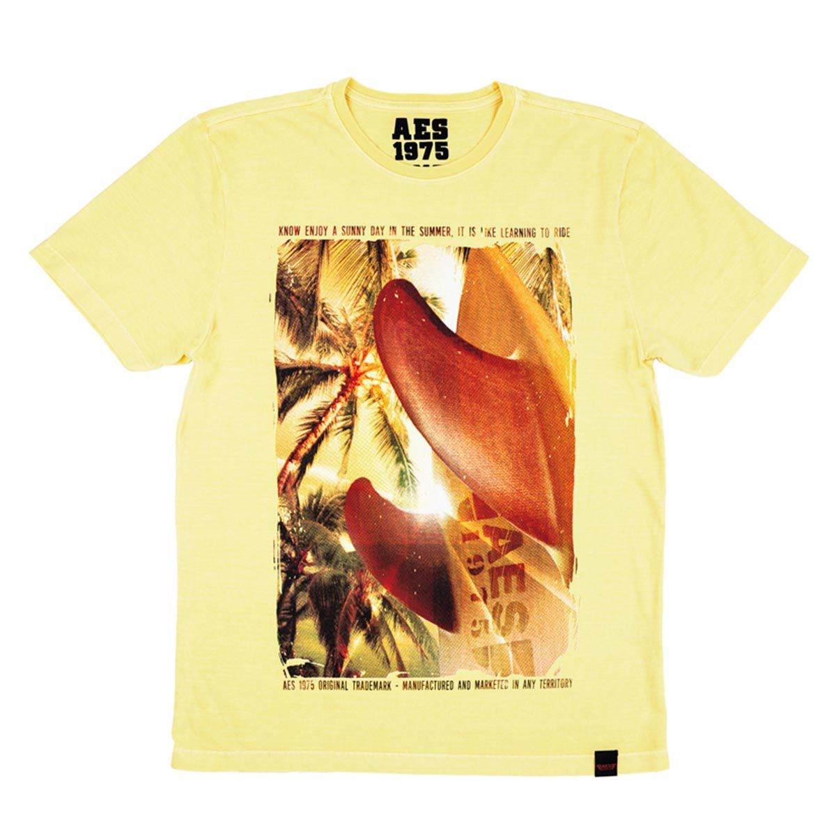 Camiseta AES 1975 Summer