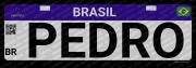 Placa Personalizada Eventos Empresa Carro Nome