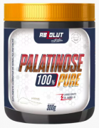 Palatinose - 300g - Absolut Nutrition