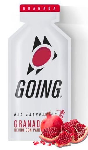 Gel Energético - GOING - 33g - UNIDADE