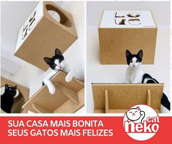 Kit 01 Nicho NekoCat + 02 Prateleiras c/Carp -  Frente Preta