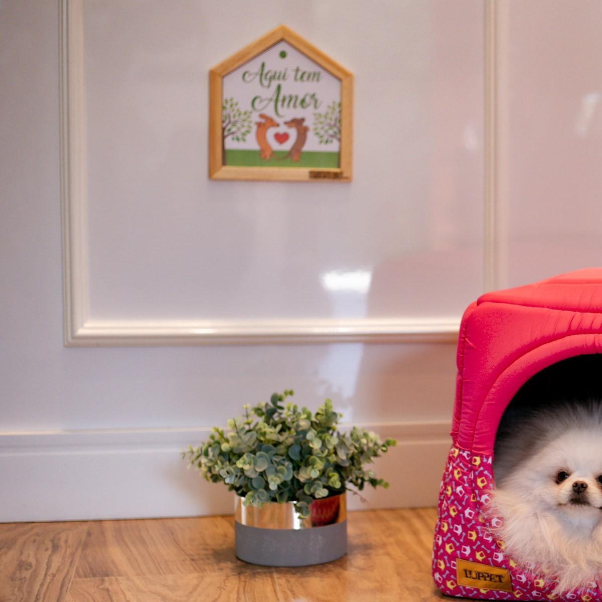 """Quadro Decorativo Para Espaço Pet """"Felicidade É Ter Um Dog Em Casa"""""""